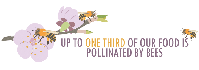 Bring Back The Bees - One Third of Our Food Is Pollinated by Bees Quote Graphic