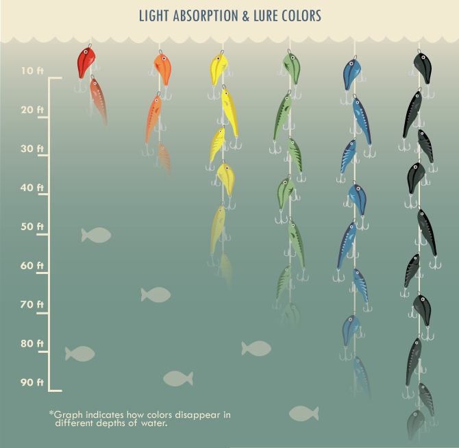 Light Absorption And Lure Colors