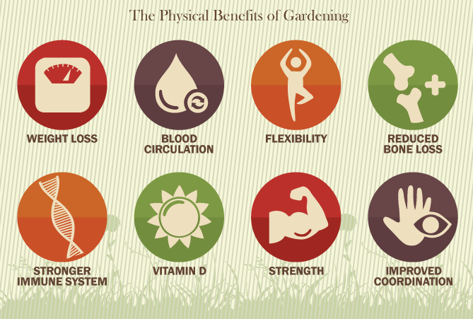 Gardening The Wonderdrug - Physical Health Benefits of Gardening