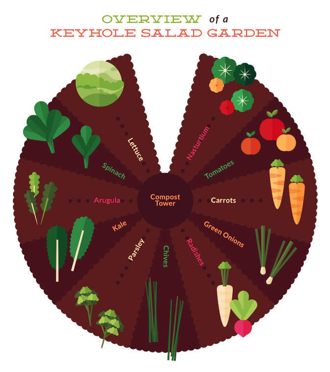 The Secret to Building a Salad Keyhole Garden Fixcom