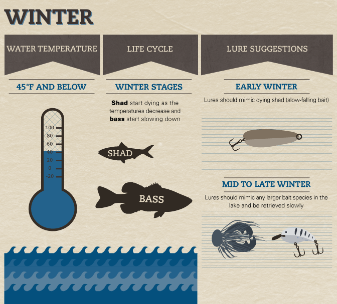 Seasonal Bass Baiting - Guide to Bass Fishing in Winter