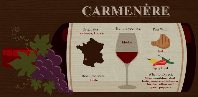 Carmenère: The Chilean Alternative to Merlot