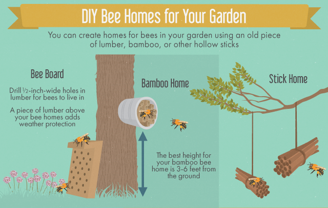 Creating a Bee-Friendly Garden - Creating Homes for Your Honeybees