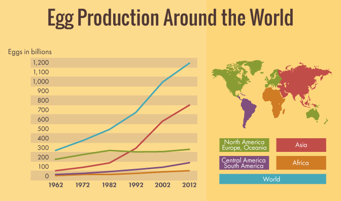 Egg Carton Labeling: Egg Production Around the World