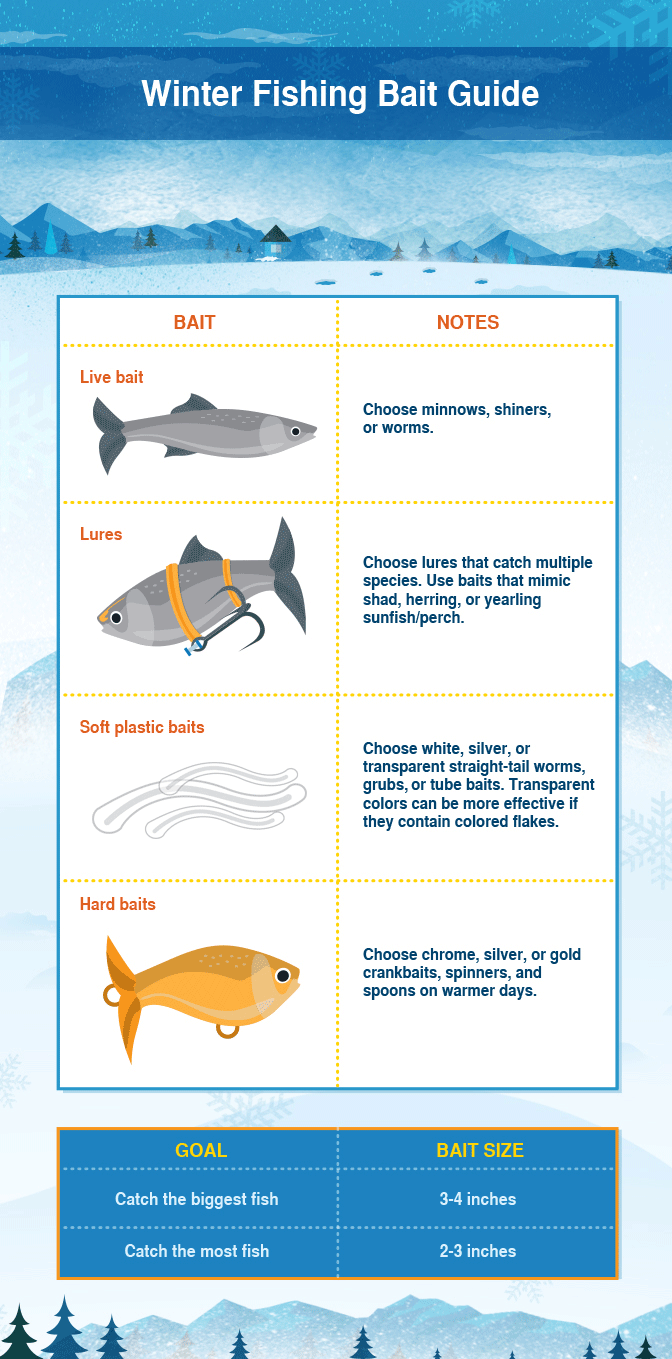 Winter Fishing Tips - Choosing the Best Bait
