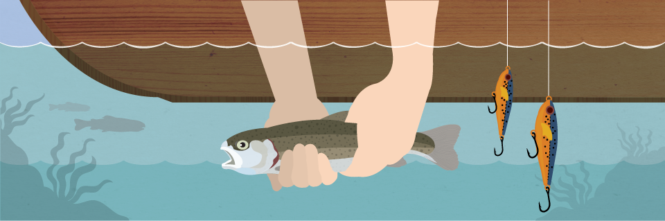 guide to catch and release fishing