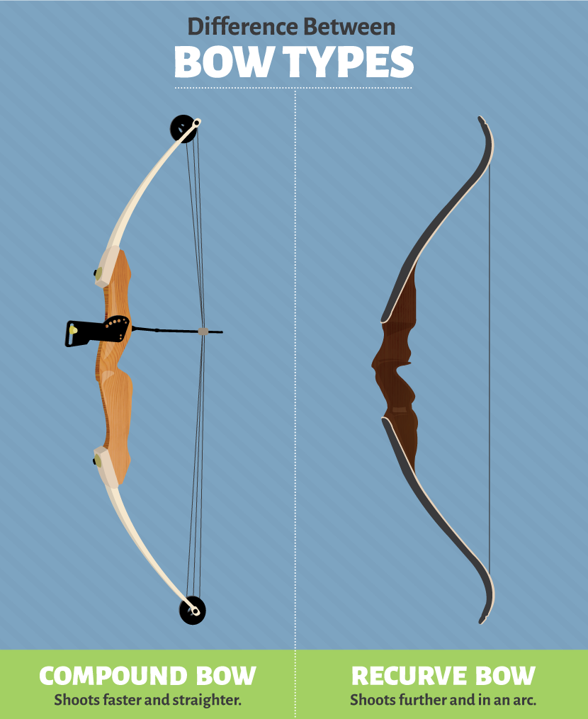 Recurve and Compound Bow Traits
