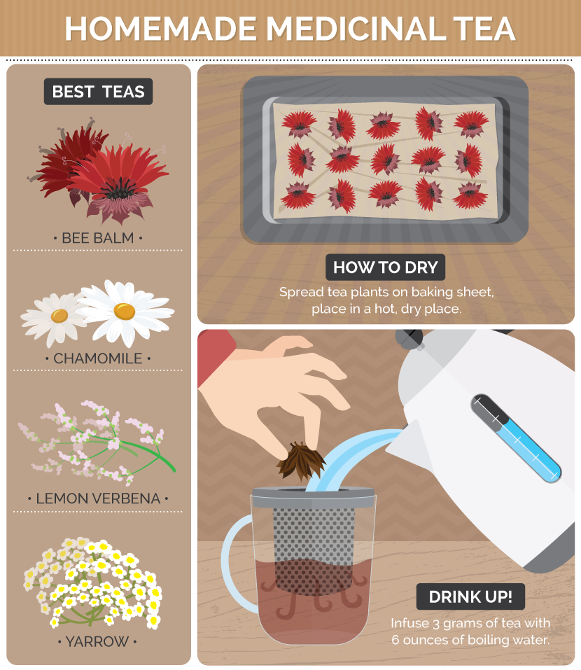 Guide to Making Homemade Medicinal Tea