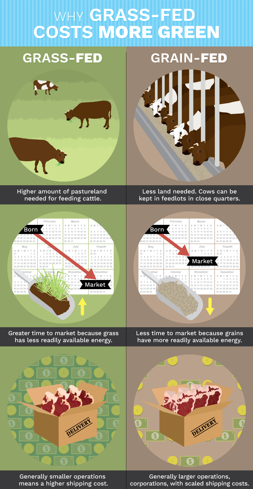 Grass Fed Beef: Cost of Grass-Fed Beef