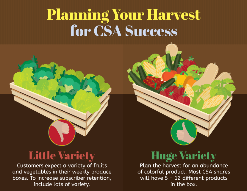Starting a CSA: Planning for a Successful Harvest