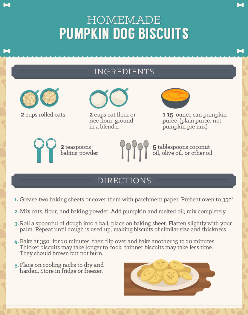 Homemade Dog Treats - Pumpkin Dog Biscuit Recipe