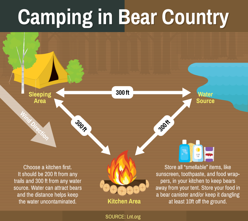 Protect your Campsite From Bears
