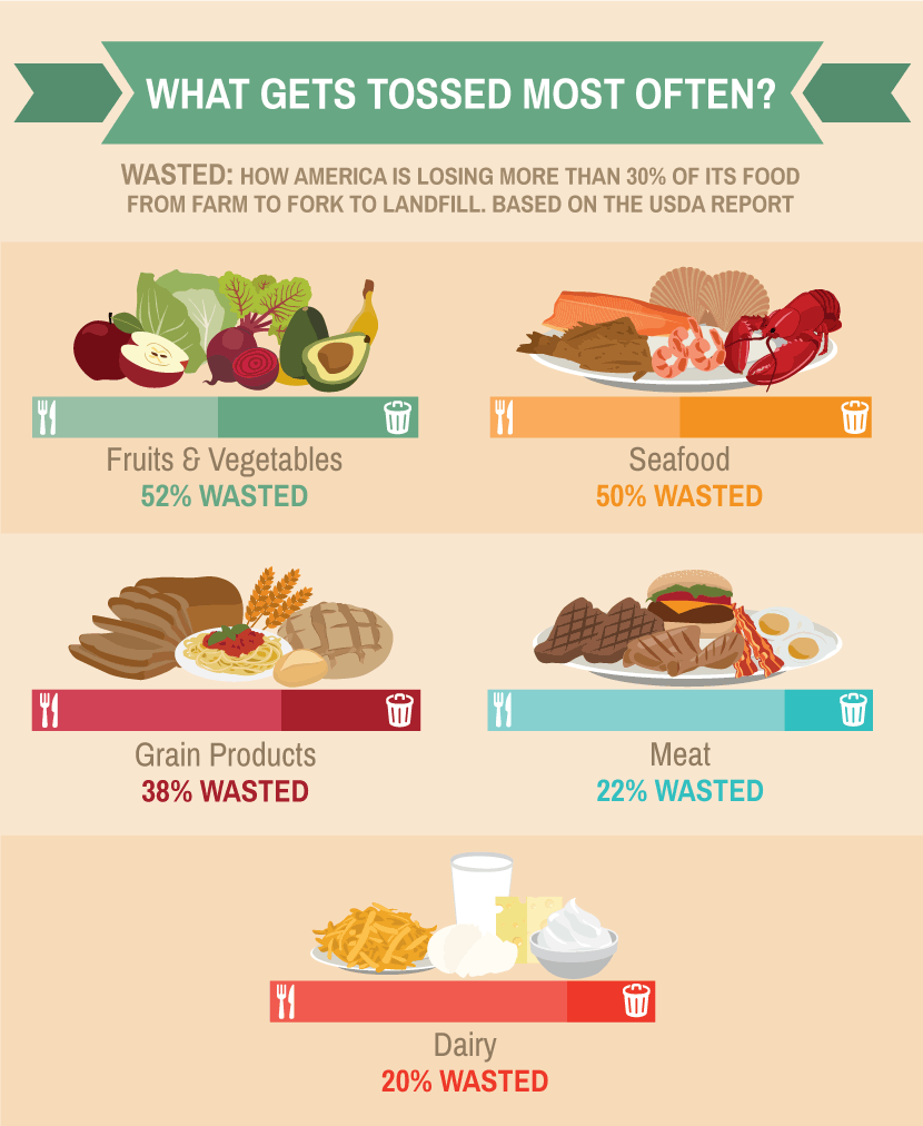 Food Waste: What Gets Tossed Most Often