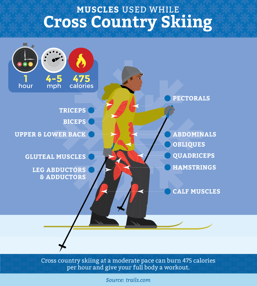 Fitness Benefits of Cross Country Skiing and Snowshoeing | Fix.com
