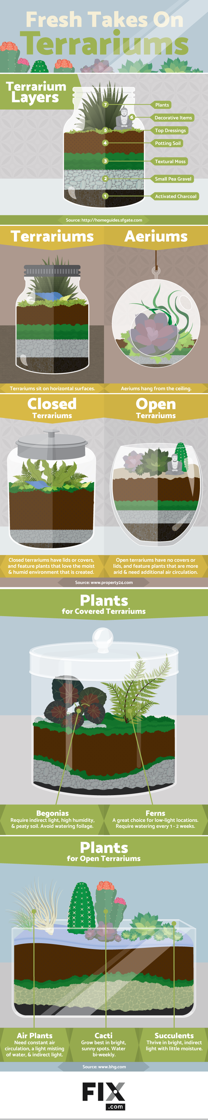 graphic showing how to create a contemporary terrarium, step by step.