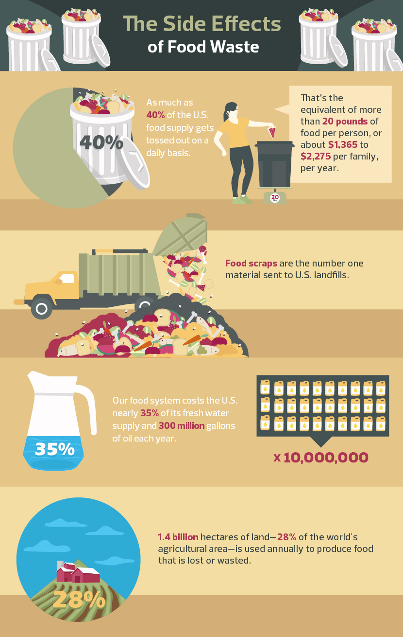 Food Waste Prevention - The Side Effects of Food Waste