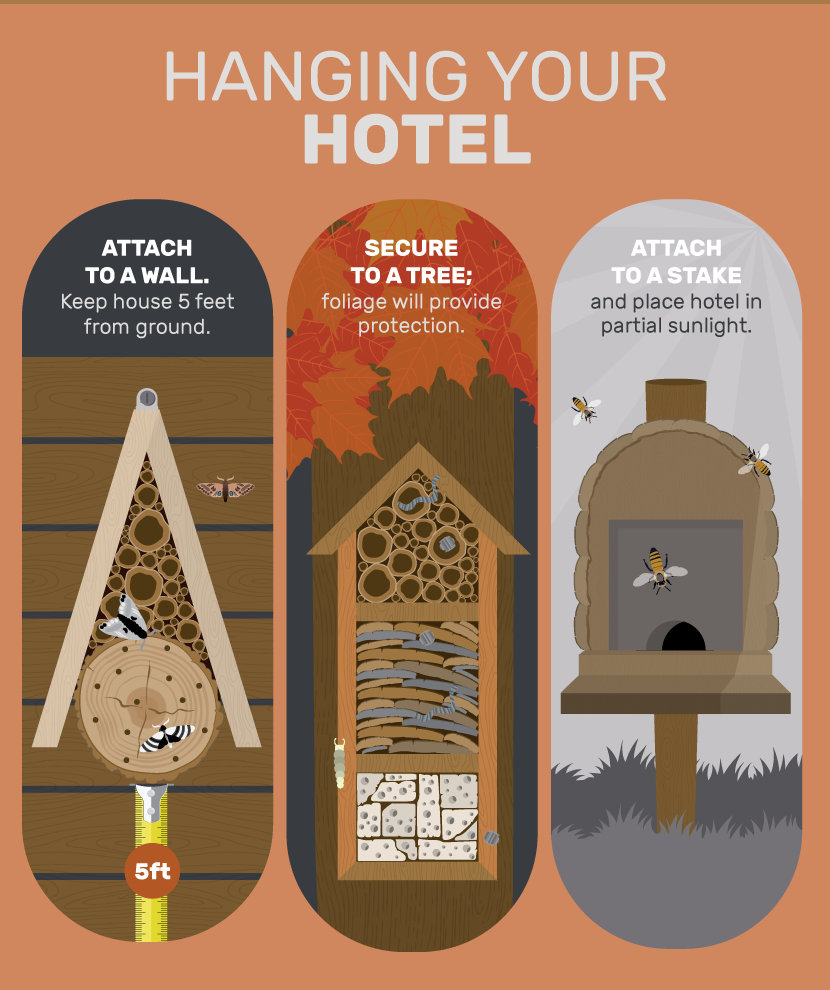 Hanging Your Insect Hotel