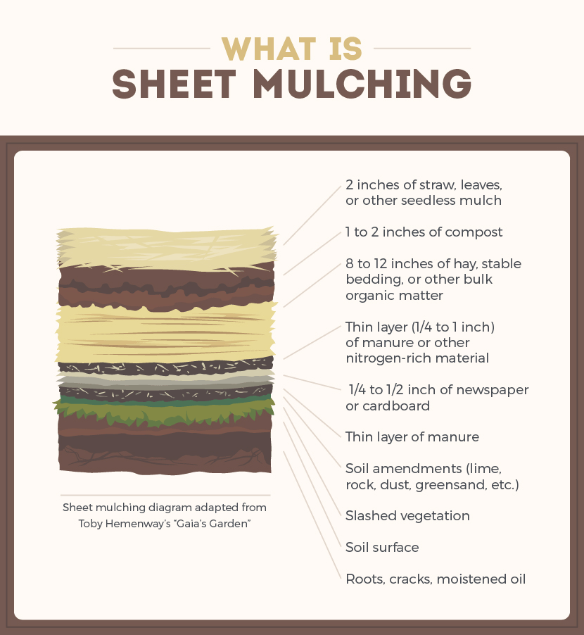 Build Fertile Soil with Sheet Mulching: What is Sheet Mulching?