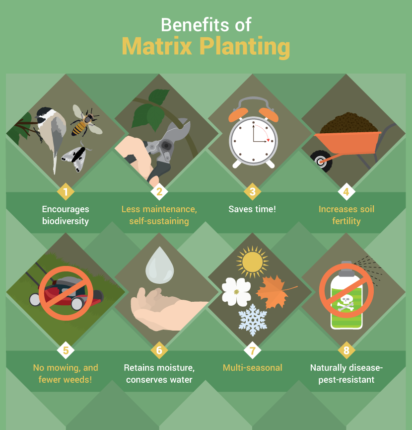 The Benefits of Matrix Planting