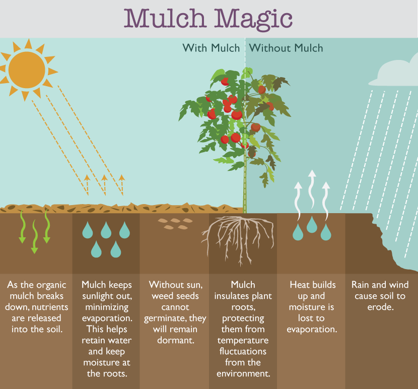 How Mulch Works