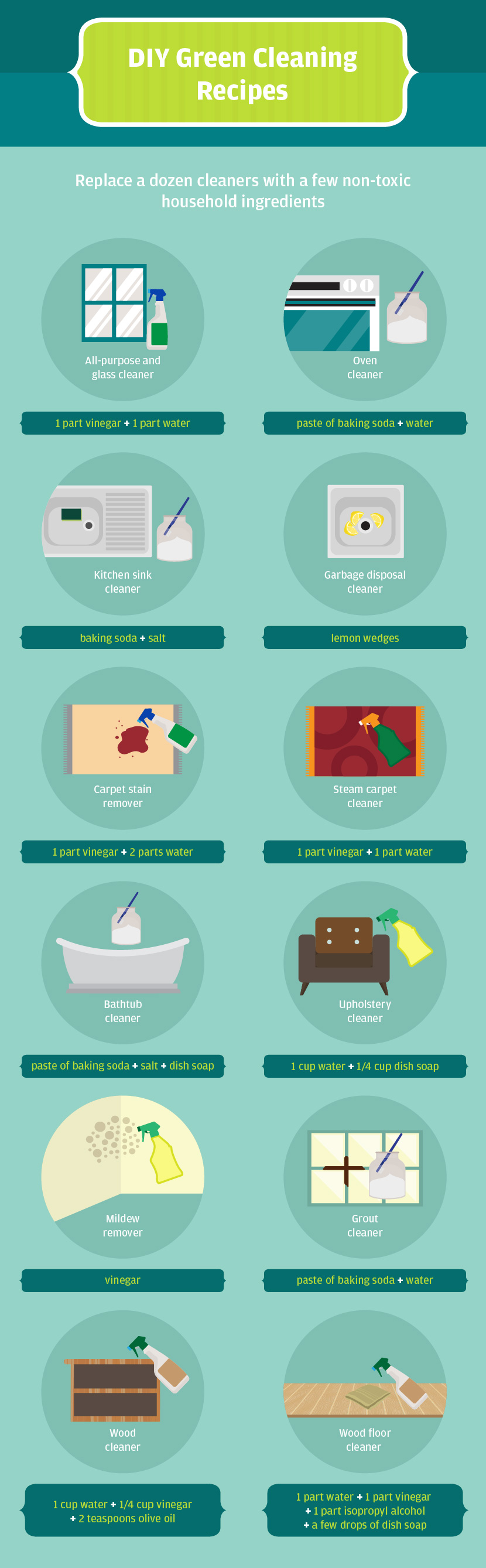 Spring Cleaning: Environmentally Friendly Cleaning Recipes