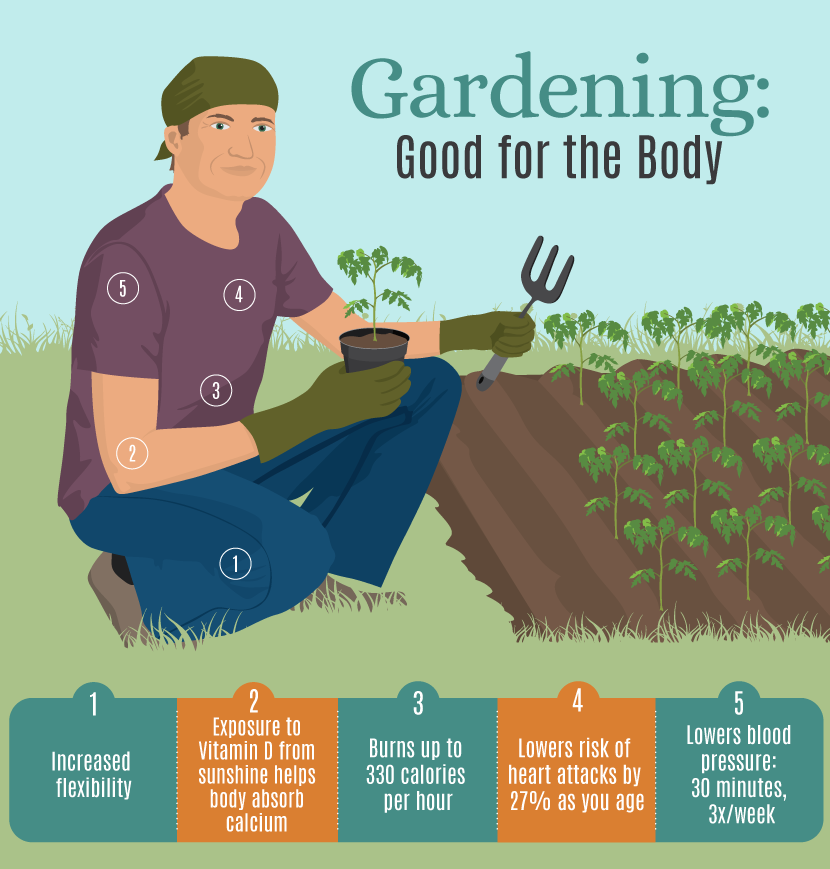 Gardening is Good for Your Body
