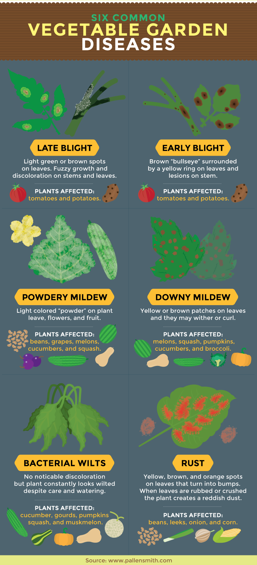 Vegetable garden disease