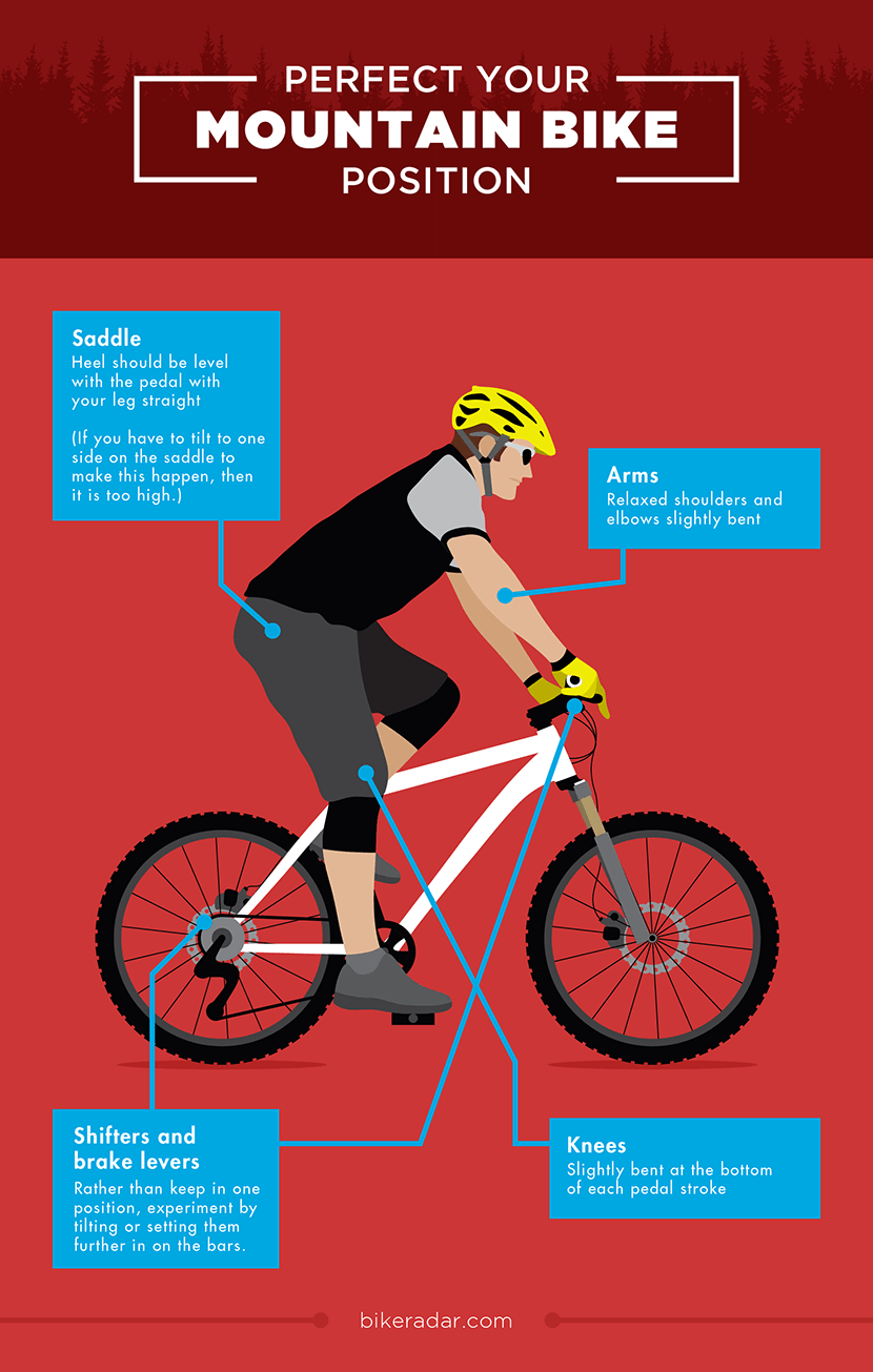 Perfect Your Mountain Bike Position - Mountain Biking Tips
