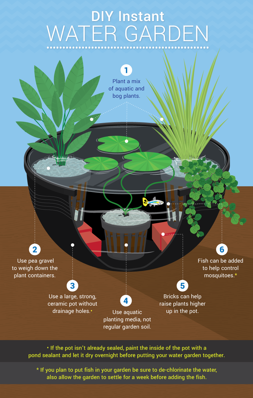 DIY Instant Water Garden   Water Features For Small Gardens