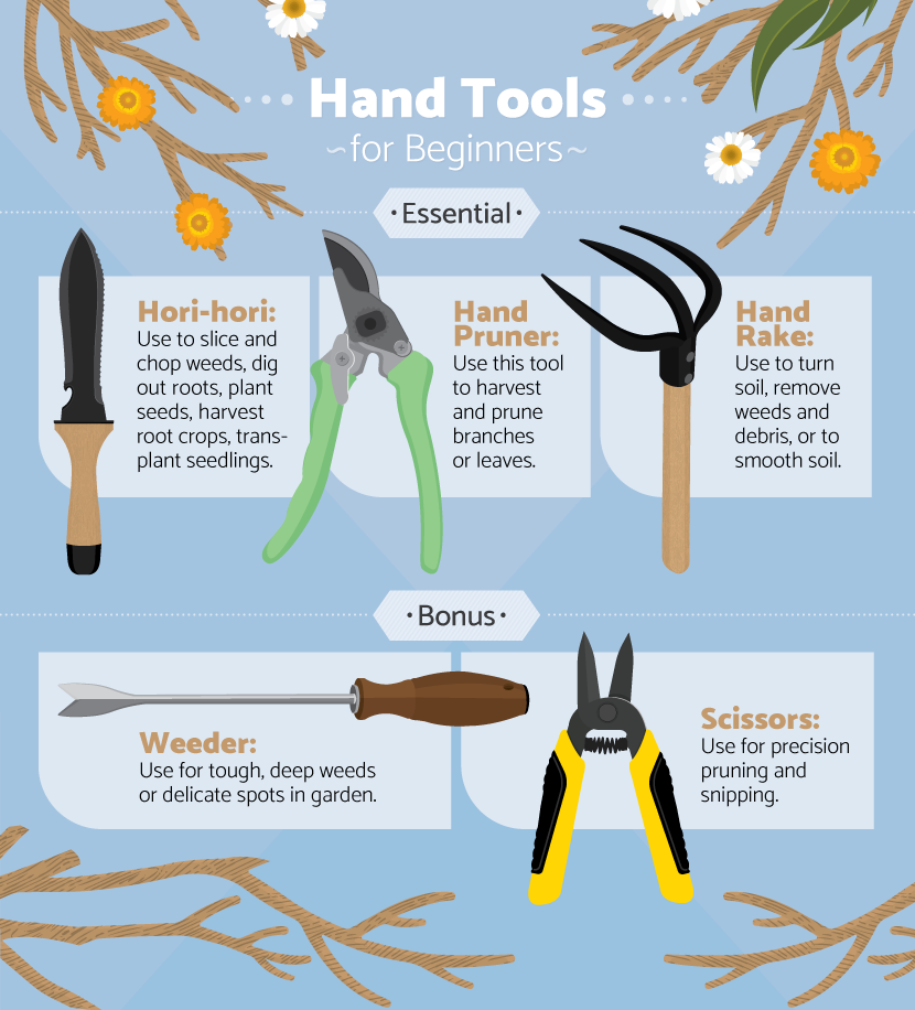 What gardening tools a beginner needs for Common garden hand tools