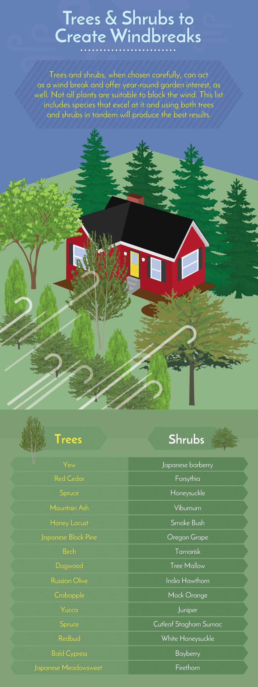 Trees and Shrubs to Create Windbreaks - Working With Challenging Garden Styles