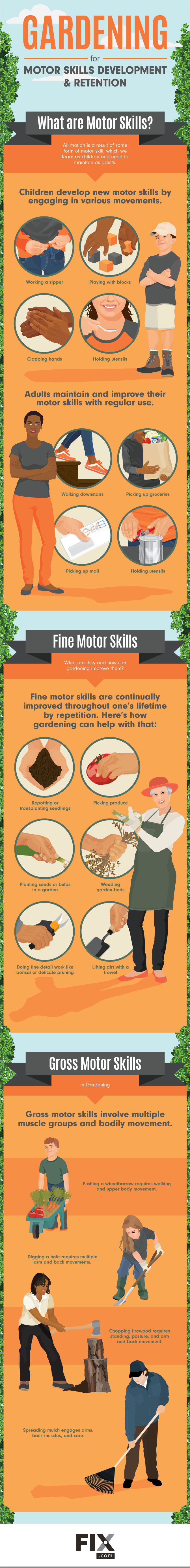 How Gardening help your Motor Skills [Infographic] | ecogreenlove